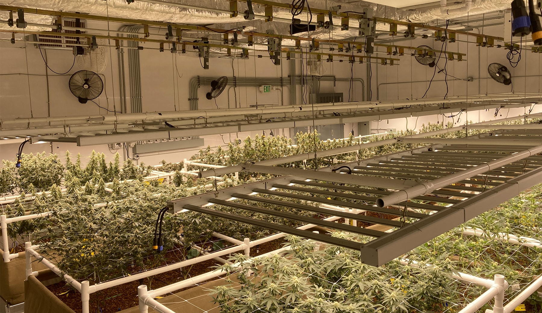 top down view of grow light lifts