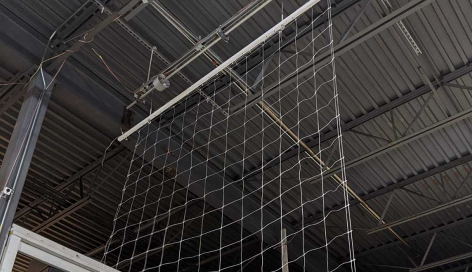 close-up of overhead cannabis drying net