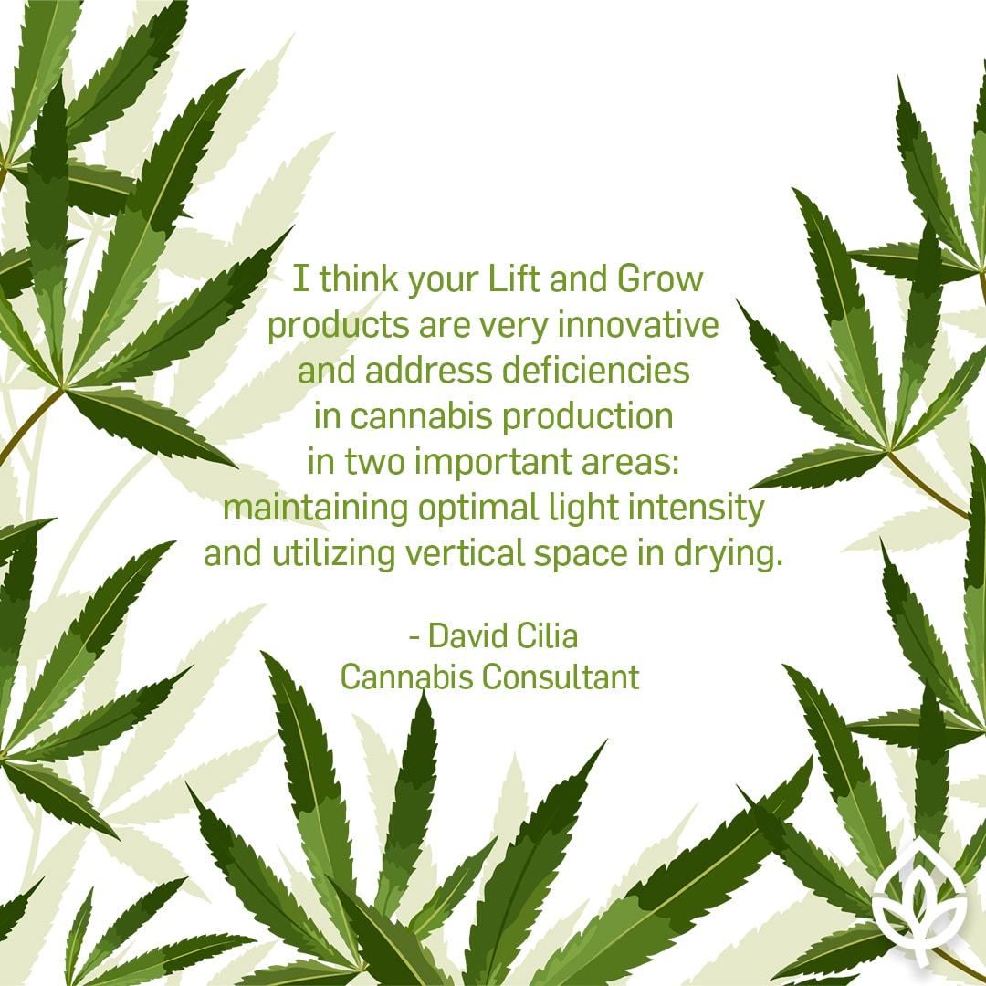 David Cilia Testimonial