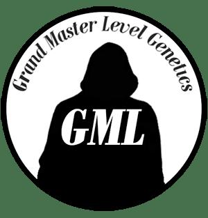 Grand master level