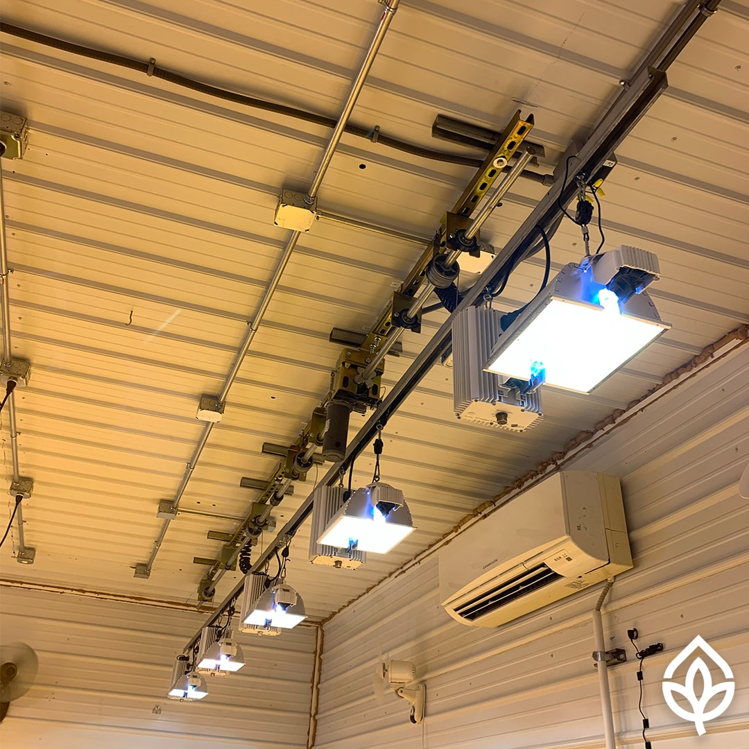 Grow Light Lift Installed at Ascension Farm